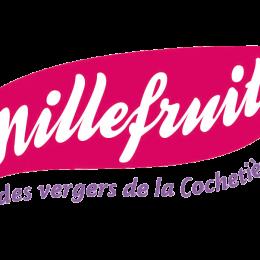 logo millefruits
